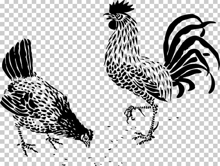 Plymouth Rock Chicken German Langshan Drawing Rooster Hen.