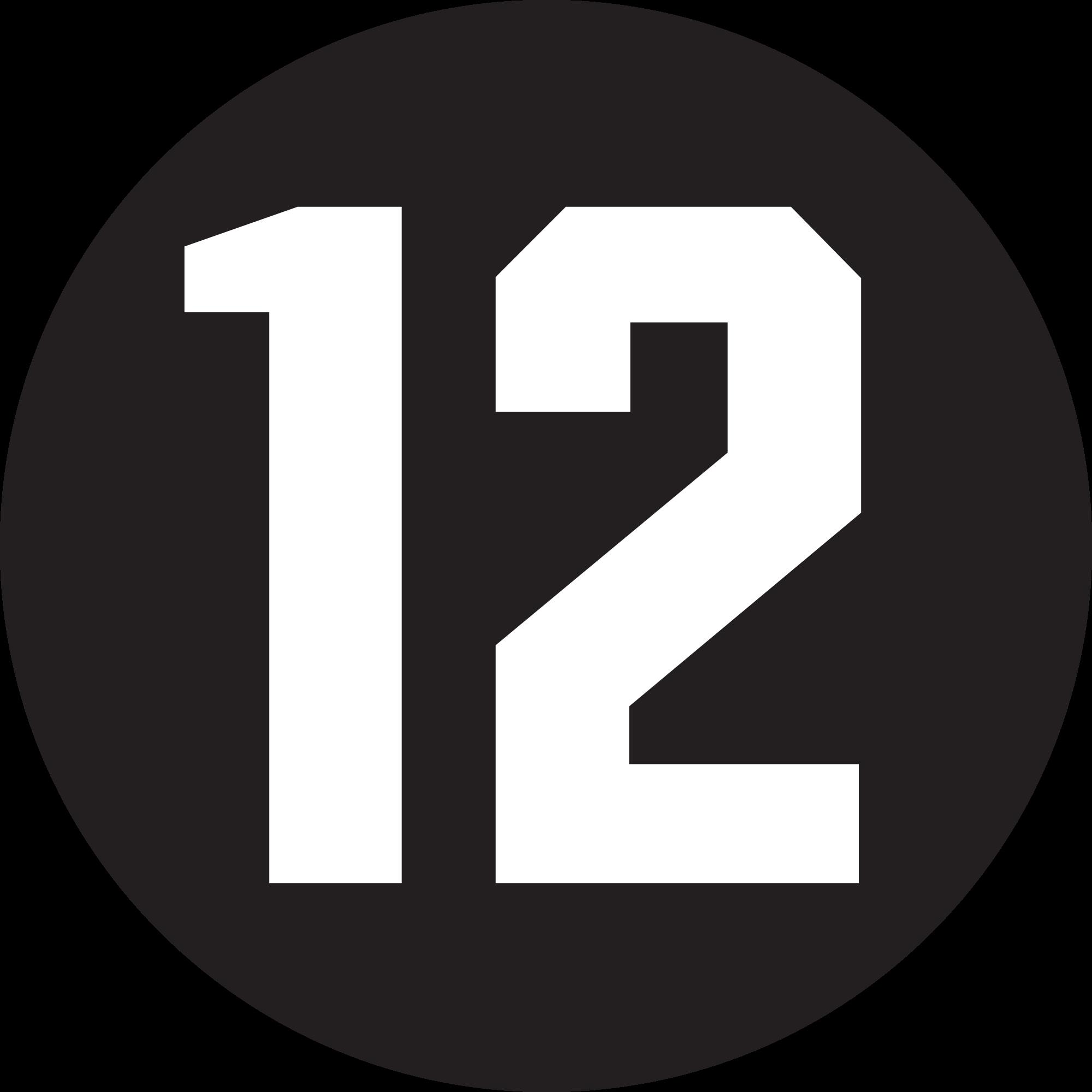 File:Kijkwijzer 12.png.