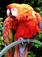 File:RGB 24bits palette sample image 9bpp MD.png.