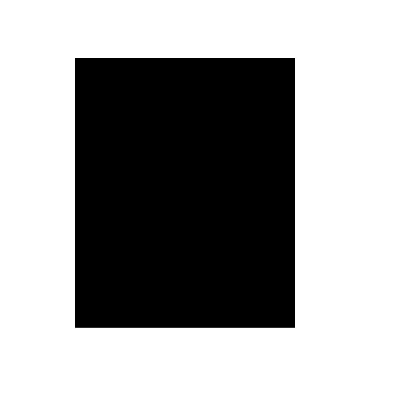 4 Icon.