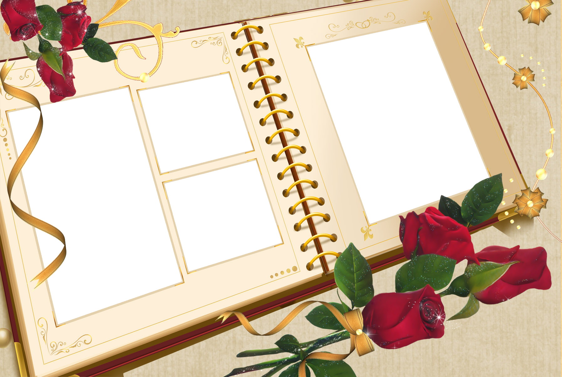 Large Transparent Album Frame with Roses.