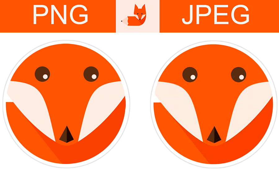 How and when to Use Different Image Formats: JPEG, PNG, SVG.