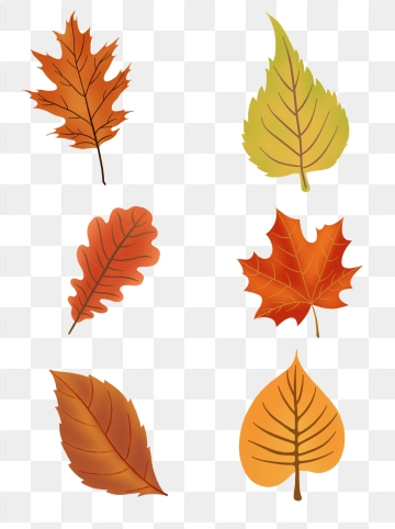Autumn PNG Images, Download 29,579 Autumn PNG Resources with.