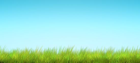 background image.