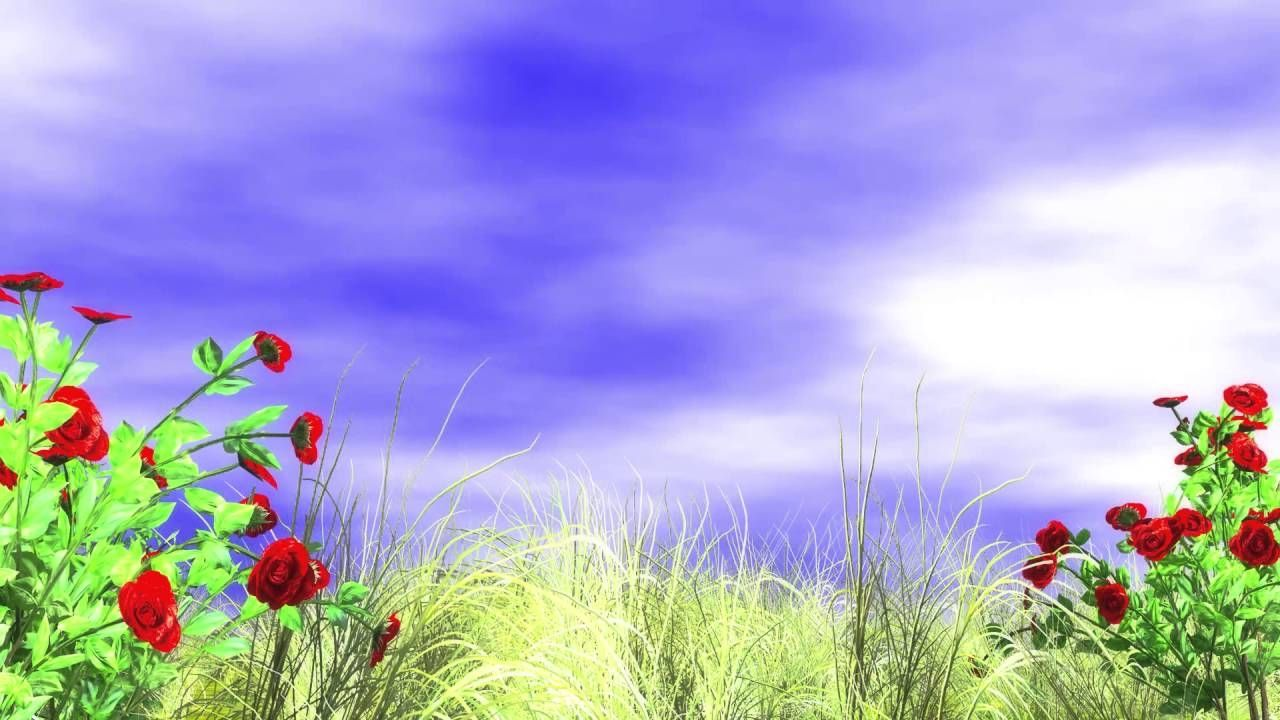 Best background images hd 1080p free download.
