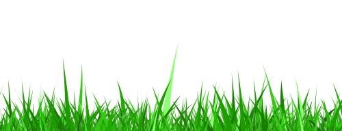 Grass Background (PSD, PNG).