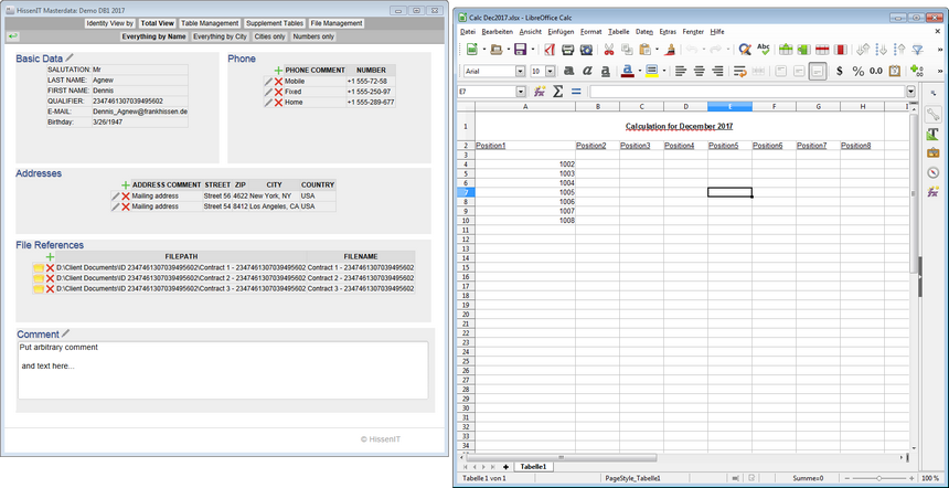 HissenIT Masterdata: Freeware for Master Data Management.