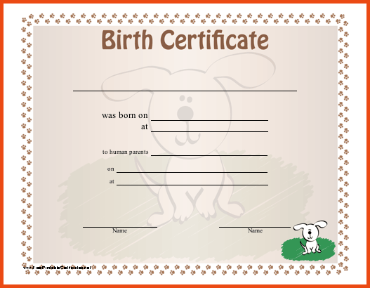 Birth certificate png 4 » PNG Image.