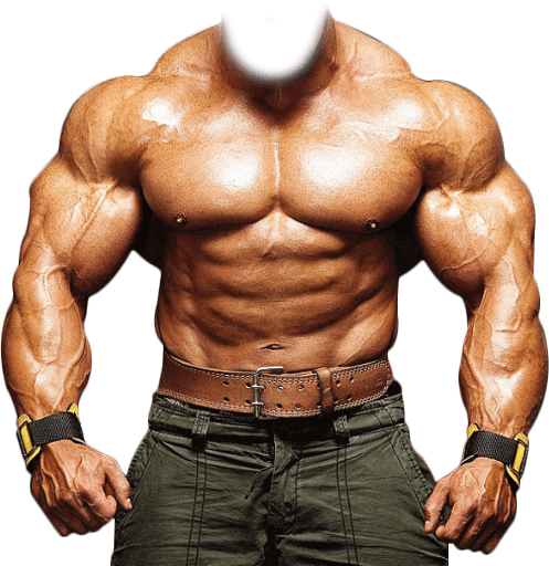 Bodybuilder Template transparent PNG.