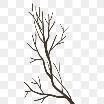 Dry Branches PNG Images.