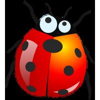 Download Bug Png 8 HQ PNG Image.