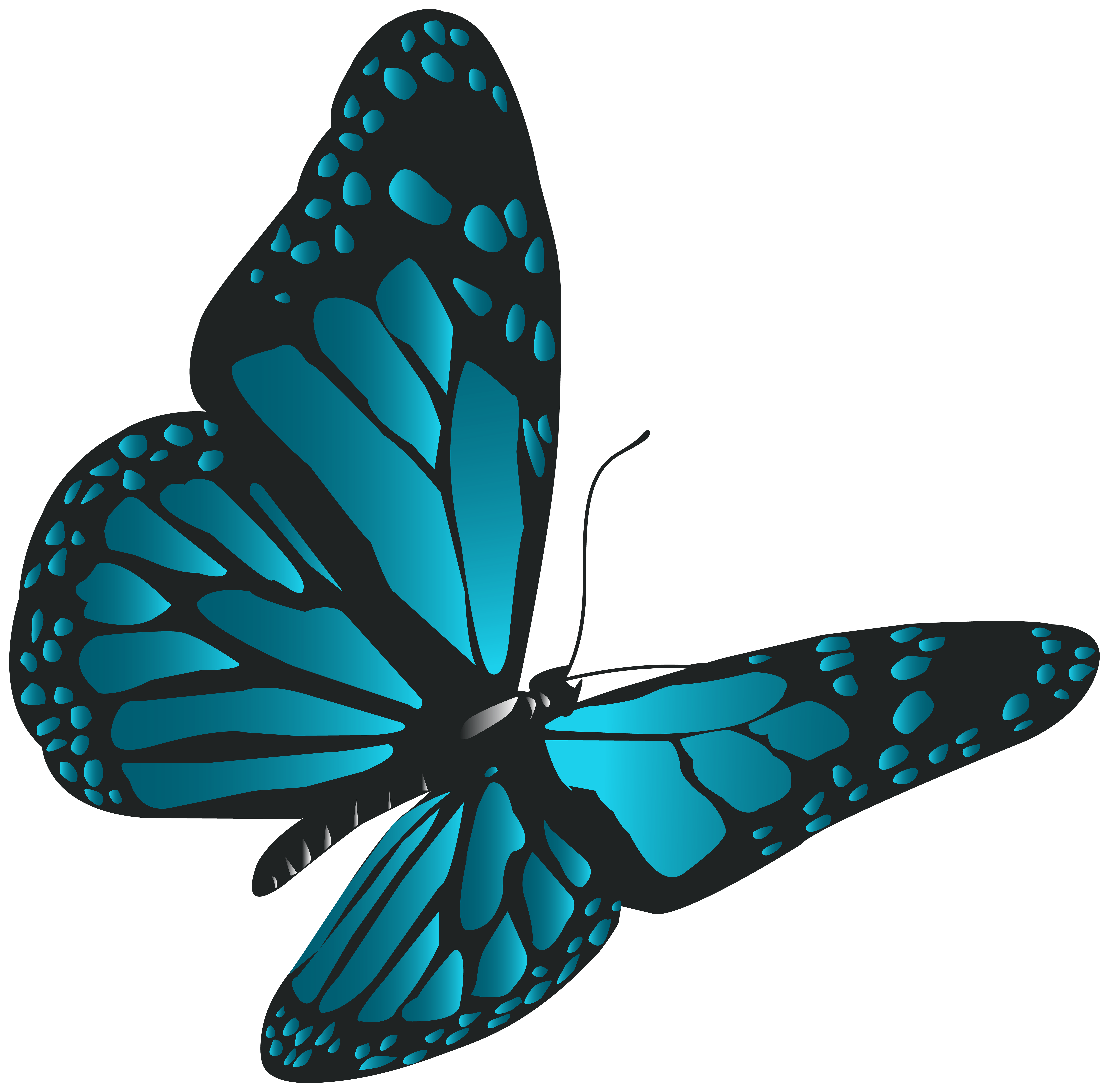 Blue Butterfly PNG Clip Art.