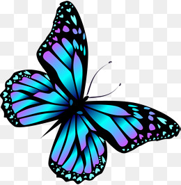 Butterfly PNG Images, Download 8,014 Butterfly PNG Resources.
