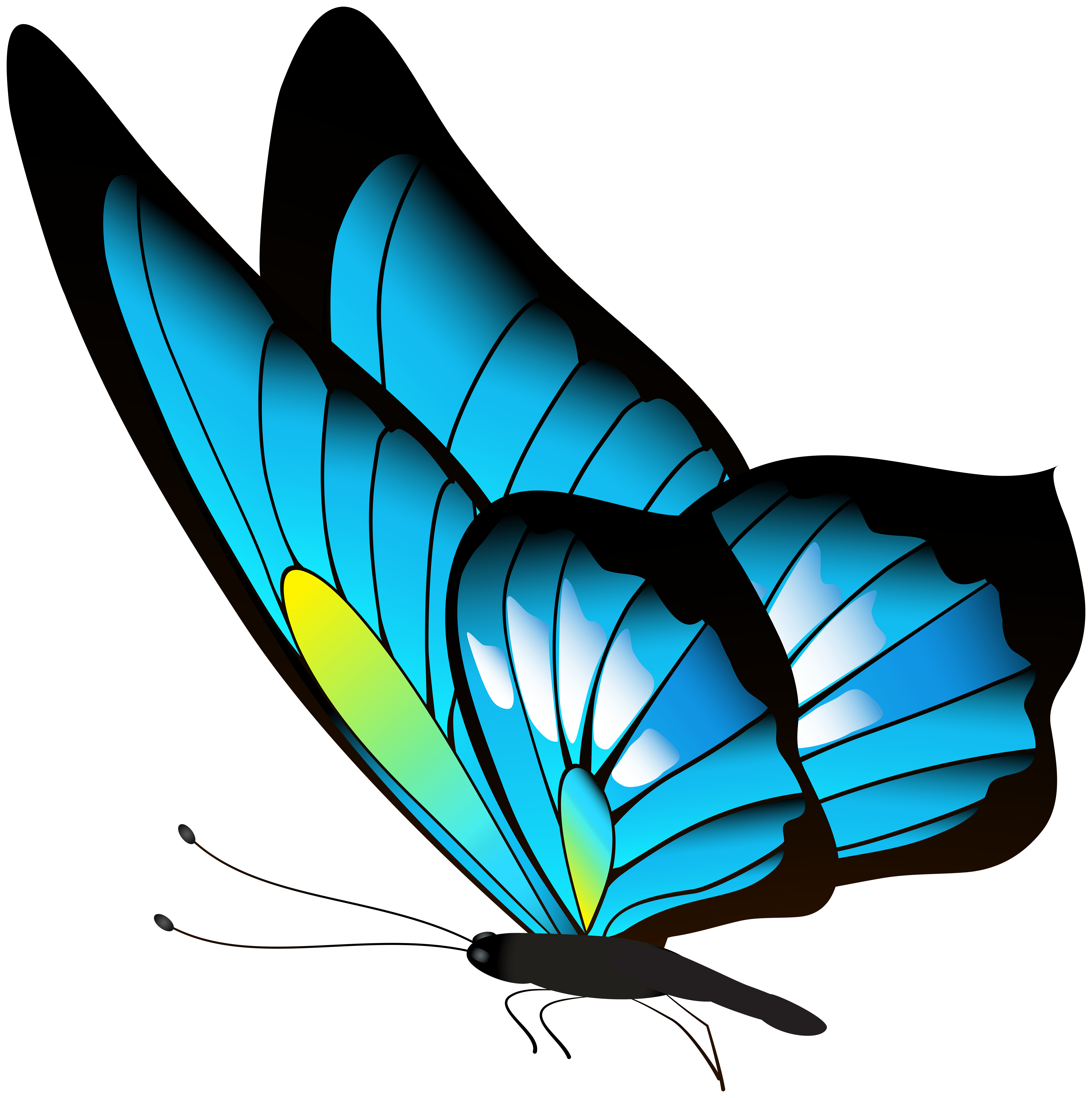 Butterfly PNG Clip Art.