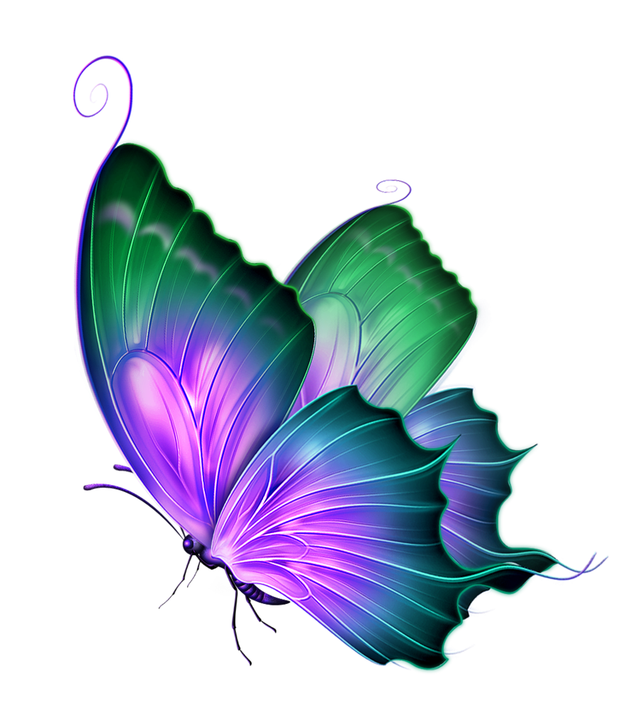 Free PNG Butterfly.