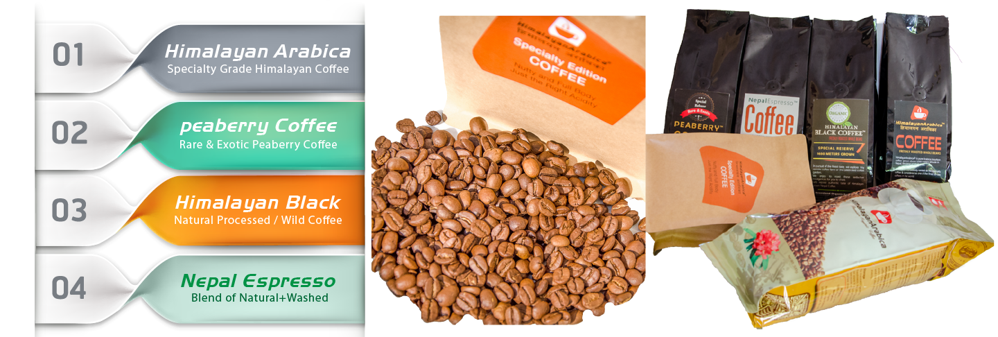Png coffee brands 6 » PNG Image.