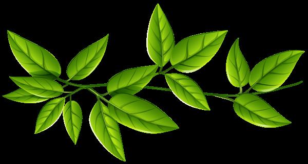 Free Leaves PNG Transparent Images, Download Free Clip Art.