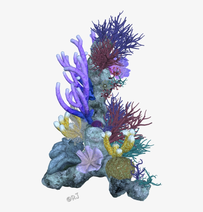 Pin Coral Reef Clipart Png.