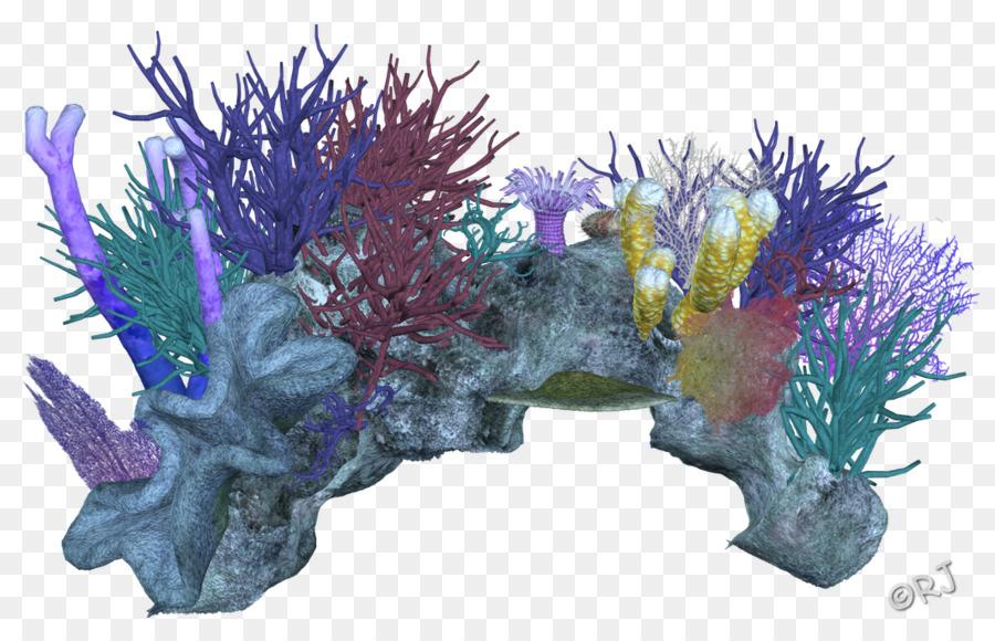 Download Free png Coral reef Marine invertebrates coral reef.