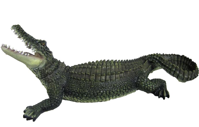Crocodile PNG images.
