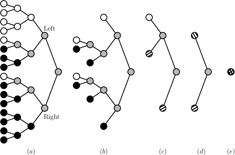 Decoding trees corresponding to the (a) SC, (b) SSC, (c.