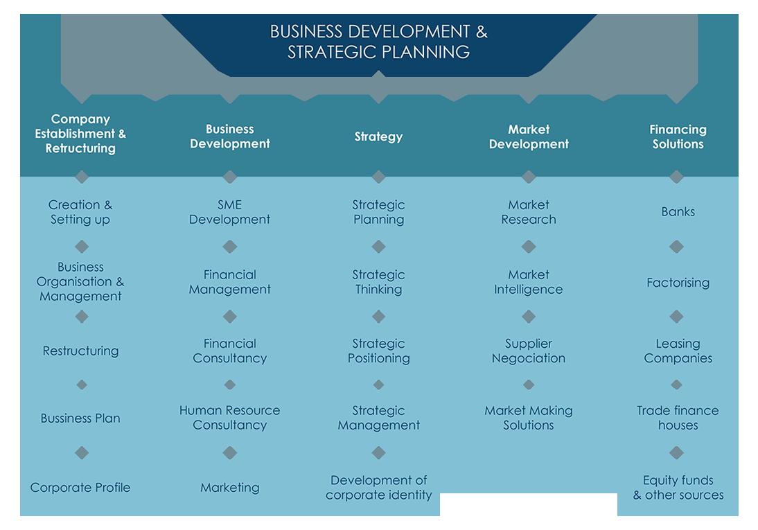 Business Development & Strategic Planning.