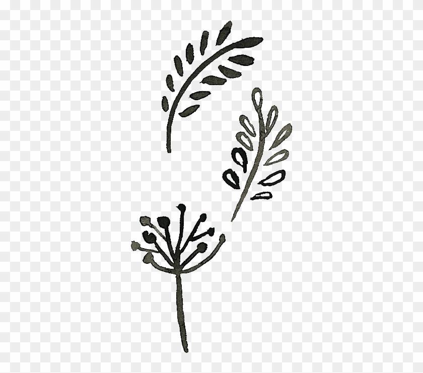 Doodle, Drawing, Art, Visual Arts, Plant Png Image.
