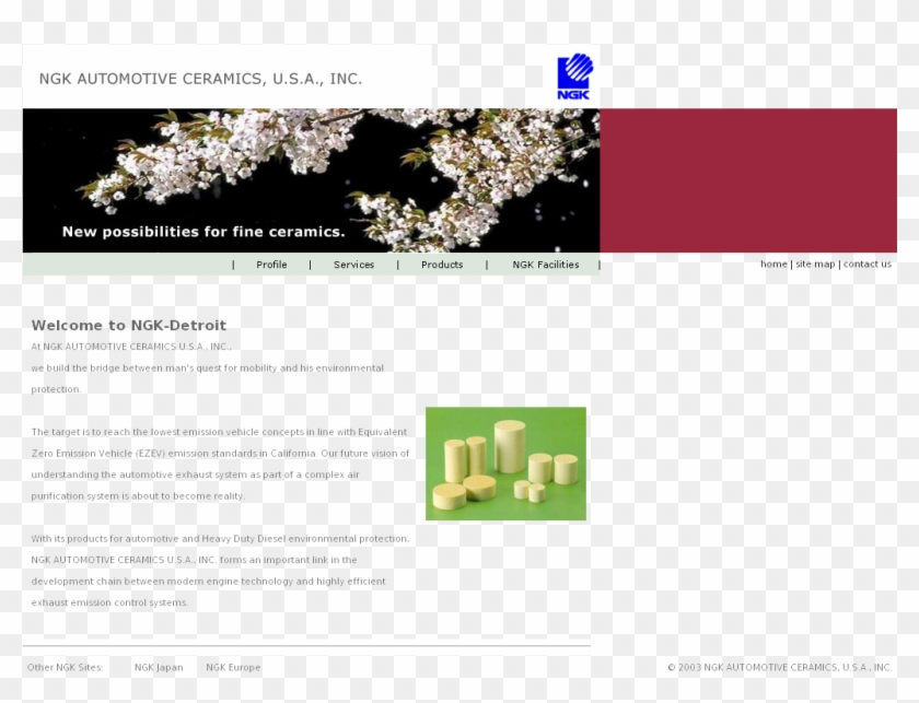 Website, HD Png Download.