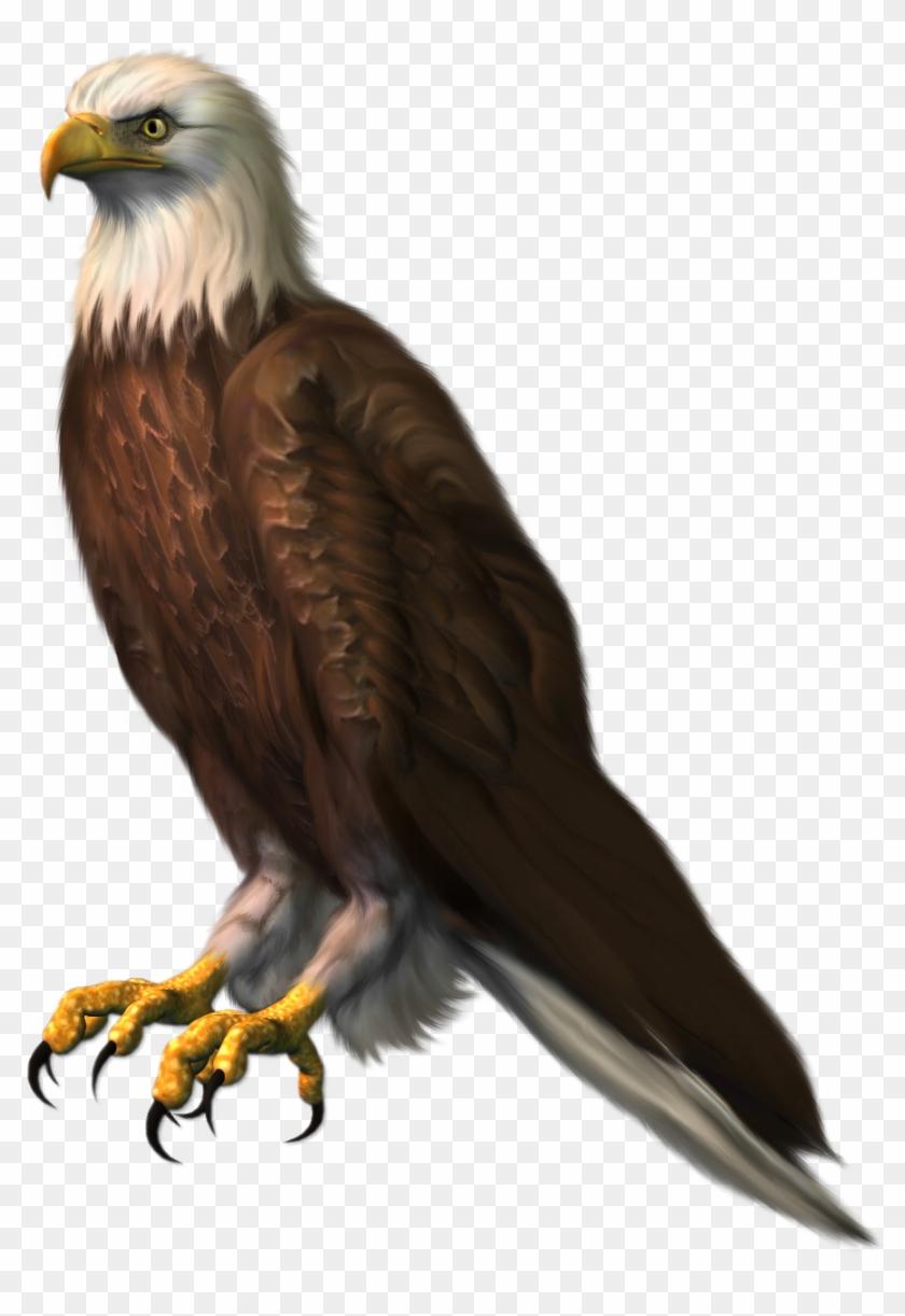 Free Png Download Eagle Transparentpicture Png Images.