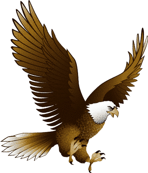 HQ Eagle PNG Transparent Eagle.PNG Images..