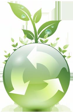Environmental Policy.
