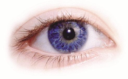Eye PNG Transparent Eye.PNG Images..