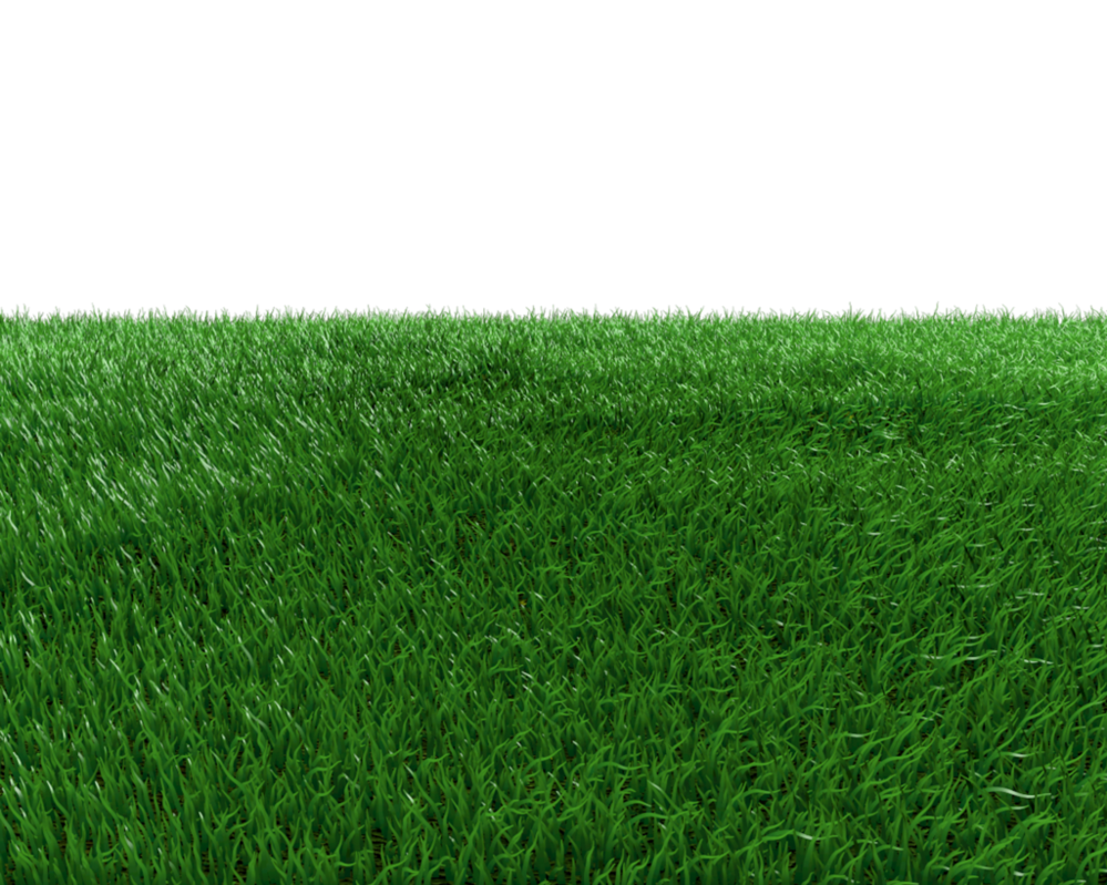 Download Field Transparent Background.