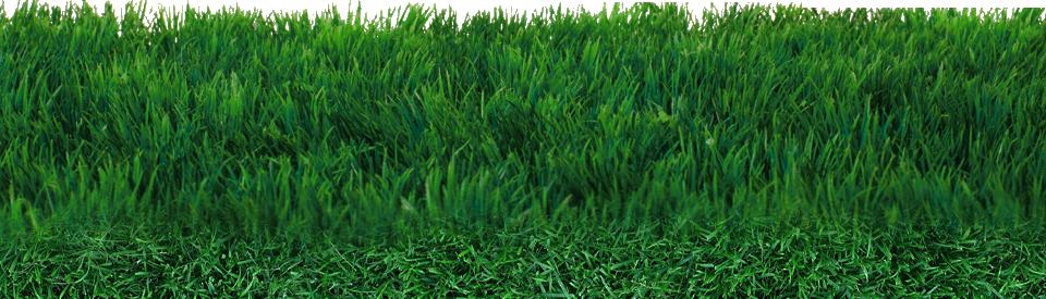 Download Field PNG Transparent.