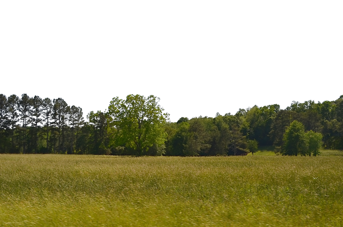 PNG Field Transparent Field.PNG Images..