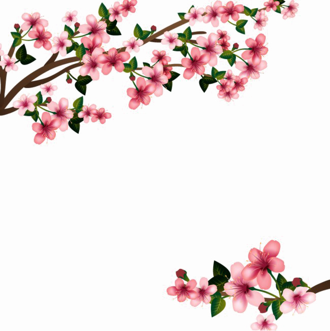 Flowers PNG Images Transparent Free Download.