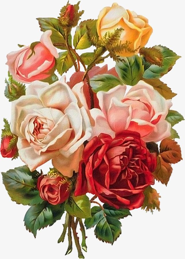 Hand Painted Flowers Hd Flowers Png, Flowers, Rose, Peony.