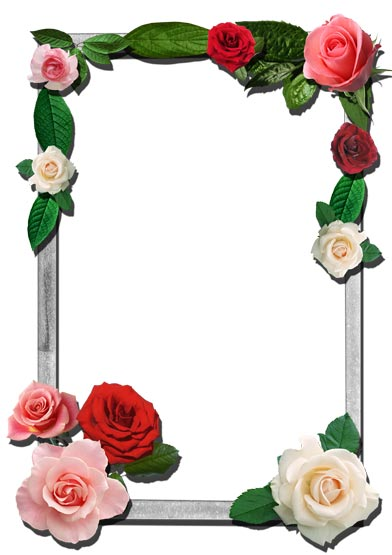 Png flower frames for photoshop.