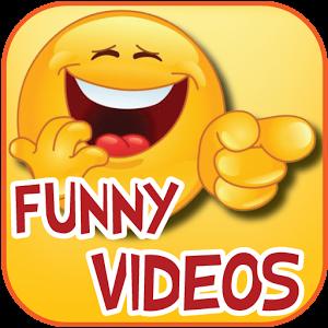 funny videos.