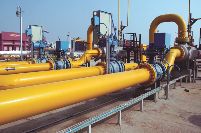 Andhra Pradesh: Piped Natural Gas scheme launched in Dokiparru.