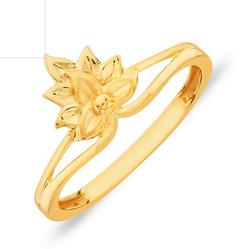 PNG ANG0046177 Nisa Nature Gold Ring.