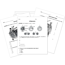 Tenth Grade (Grade 10) Biology Questions for Tests and.