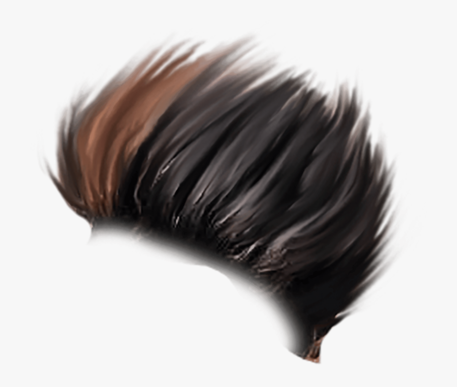Download Free Png Download Hair For Picsart Png Images.