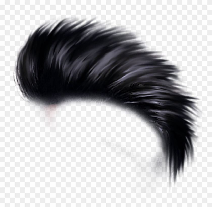 Free Png Hair Png.