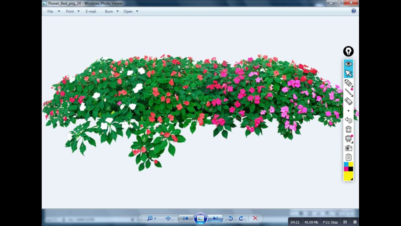 png flower for free download photoshop.