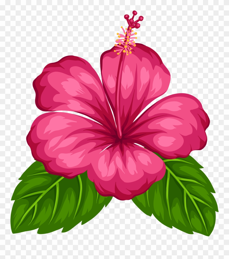 Blue Tropical Flowers Png Clipart (#7965).
