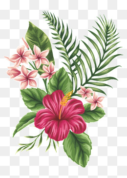 PNG Tropical Flowers Transparent Tropical Flowers.PNG Images.