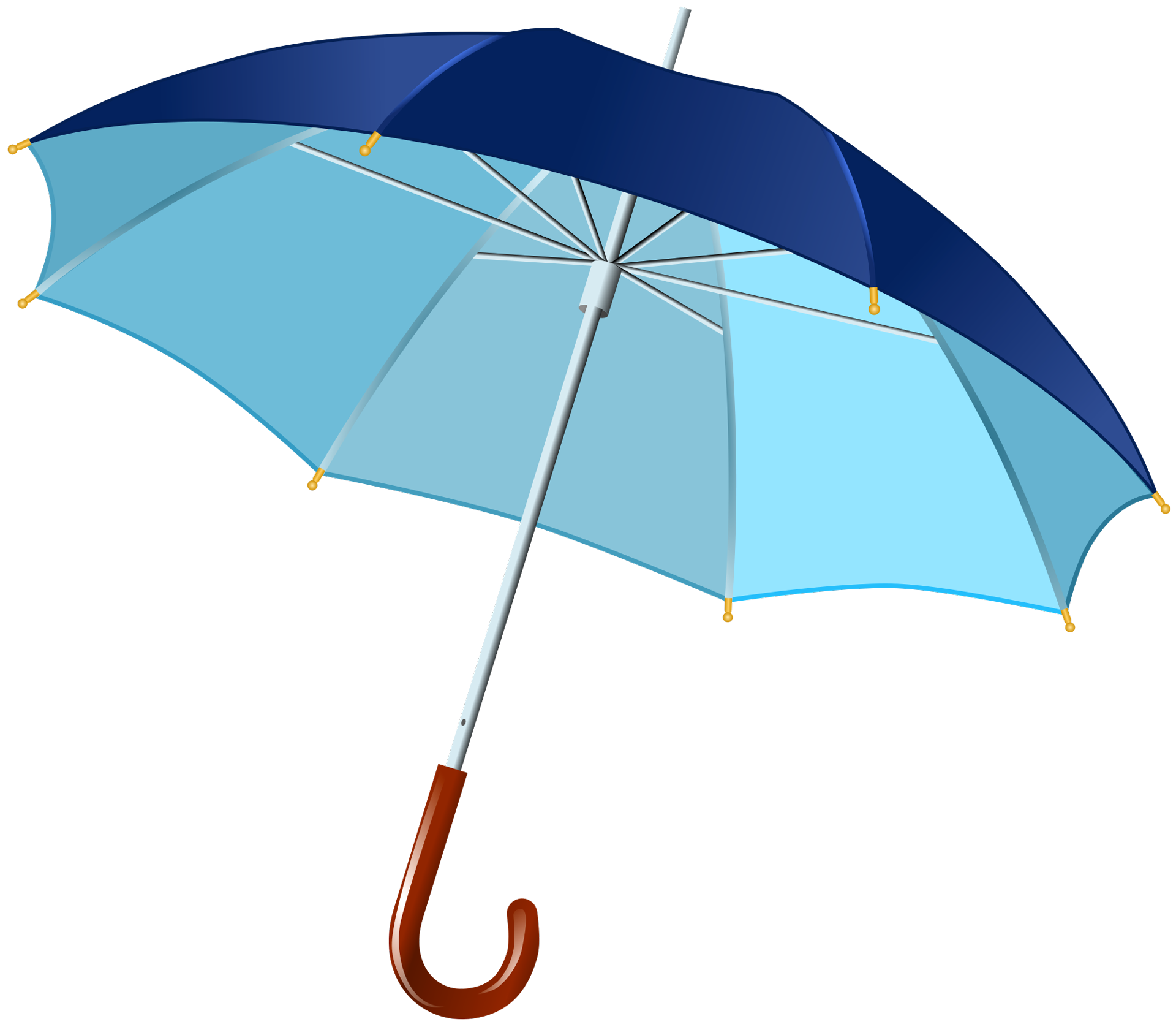 Umbrella PNG HD Background.