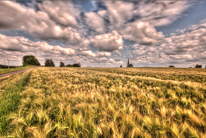 10 Common HDR Photography Mistakes and How to Avoid Them.