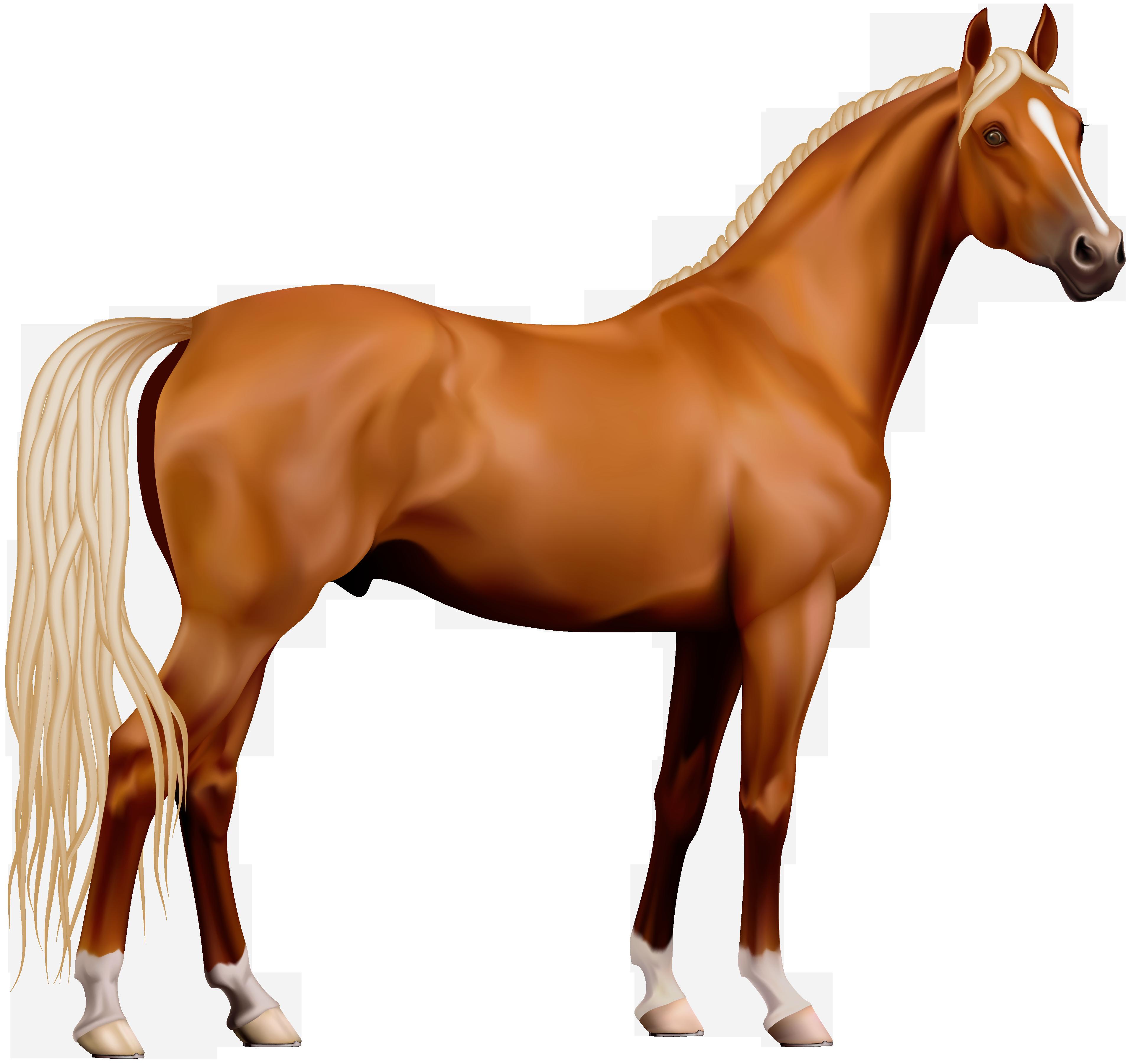 Transparent Horse PNG Clipart.
